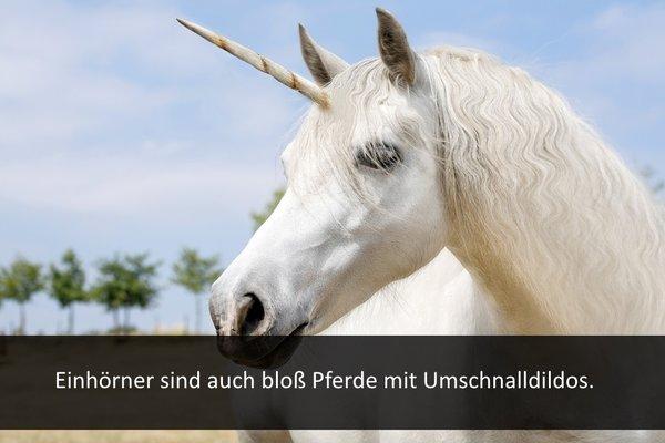 Lustige pferdesprüche pferde