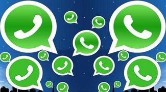 WhatsApp-AGB: Das steht wirklich in den Geschäftsbedingungen
