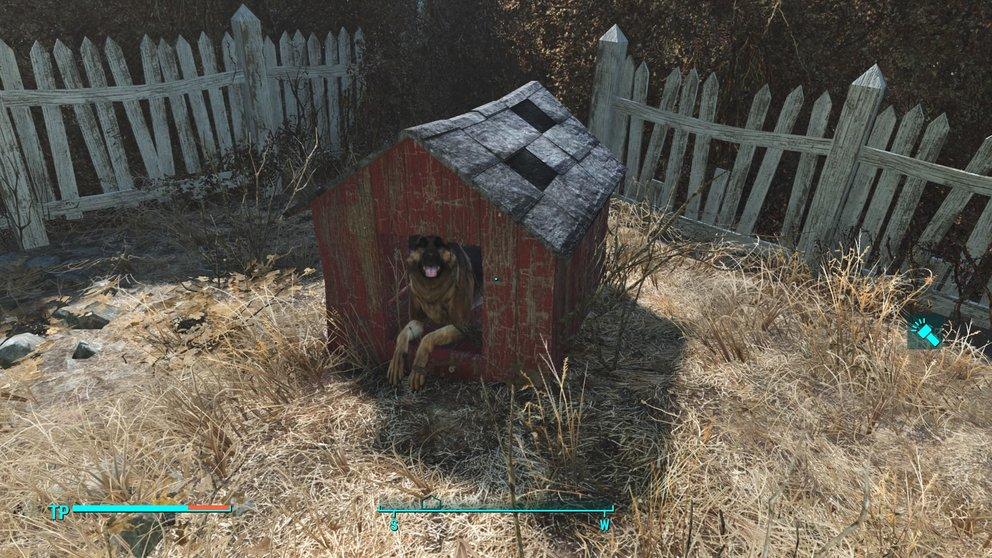 Nie mehr Dogmeat suchen müssen. Baut nur eine Hundehütte in jeder Siedlung.