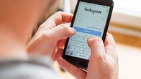 Instagram-Suche: Mitglieder und Bilder finden – auch ohne Anmeldung