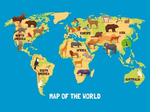 Wie viele Länder gibt es auf der Welt?