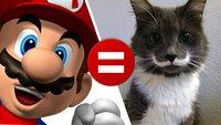 Diese 10 Tiere sehen fast so aus wie Super Mario!