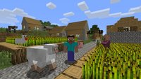 Zehnjähriger gewinnt erste Minecraft-Meisterschaft