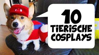 Diese 10 tierischen Cosplays musst du gesehen haben
