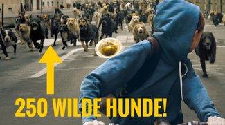 Kino Extrem: Die 5 riskantesten Filme des letzten Jahres