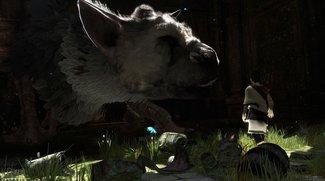 The Last Guardian: Sony ist sicher, dass es euch nicht enttäuschen wird