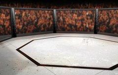 CM Punk bei UFC: Termin und...