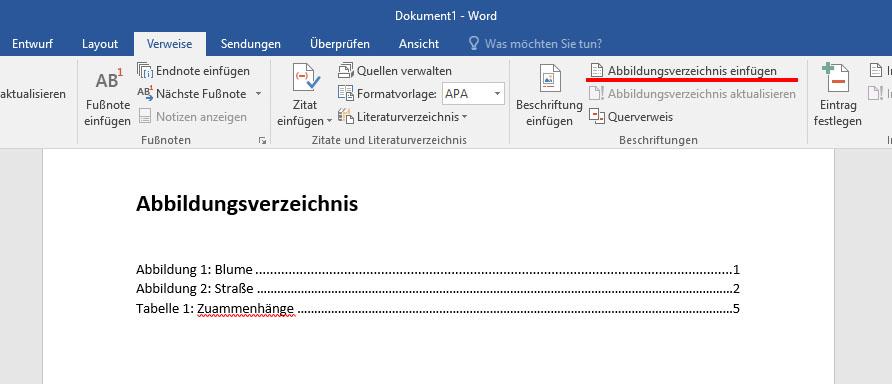 Word: Abbildungsverzeichnis Erstellen