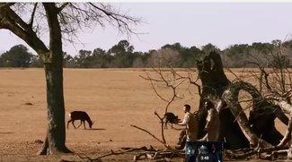 Zoo im Stream und TV: Neue Serie bei Pro7 heute