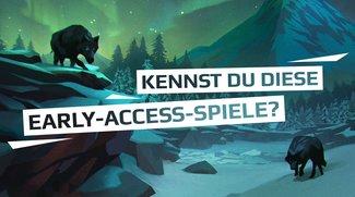 Teste dich: Kennst du diese Steam Early Access-Games?