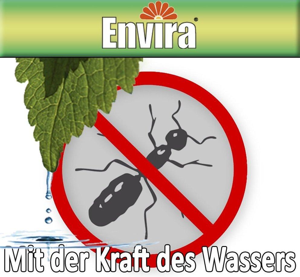 haus)-mittel gegen ameisen, die wirklich helfen!. haushaltstipps ... - Was Tun Gegen Ameisen In Der Küche