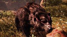 Far Cry Primal: Großen Narbenbär zähmen - Video mit Walkthrough