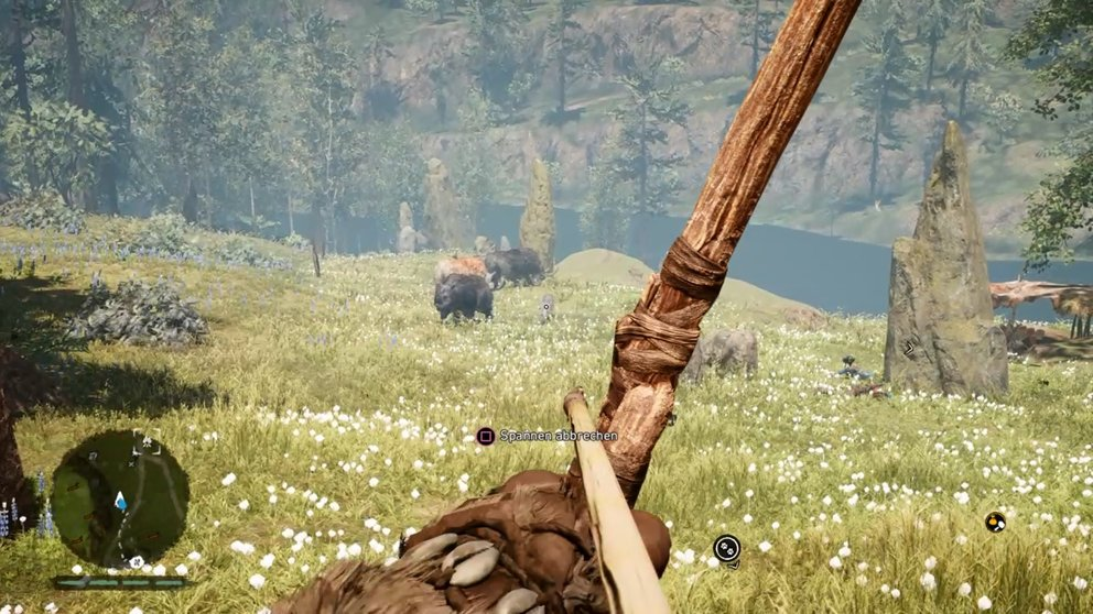 Hier wird ein seltenes Zweinashorn von normalen Wollnashörnern begleitet.