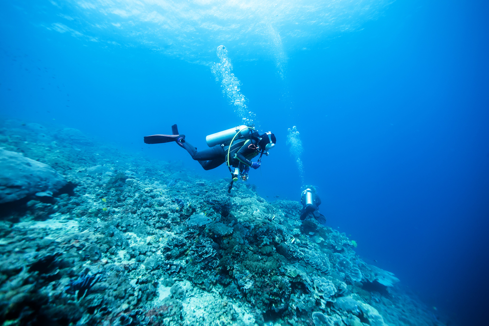 48f65ab744 Wasserdichte Fitness-Tracker: Diese Geräte sind für Schwimmer geeignet