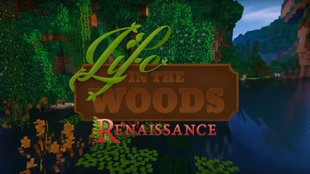 Life In The Woods Multiplayer