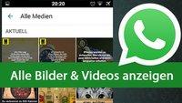 WhatsApp-Chat: Alle geposteten Bilder und Videos auf einmal anzeigen – so gehts