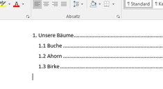 Word: Inhaltsverzeichnis erstellen und bearbeiten – so geht's