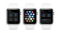 iPhone SE und Apple Watch mit überzeugenden Verkaufszahlen