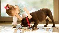 Facebook-Warnung: Vergiftetes Tierfutter von Fressnapf im Umlauf?