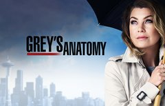 Grey's Anatomy Staffel 14:...