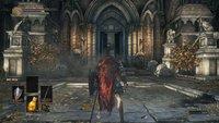 Dark Souls 3: Schild mit 100% Schadensminderung - Fundort im Video