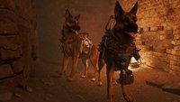 Fallout 4: Mod lässt euch als Dogmeat spielen