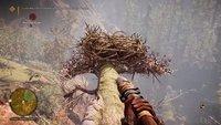 Far Cry Primal: Federn finden - so bekommt ihr sie schnell