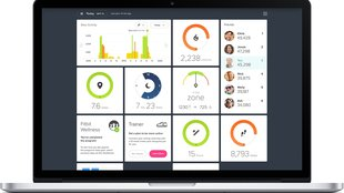 Fitbit-Dashboard – so funktioniert's