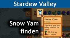 Stardew Valley: Snow Yam finden – So geht's im Winter