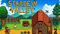 Stardew Valley: Spieler kaufen Nutzern illegaler Kopien den Titel, um Piraterie entgegenzuwirken
