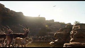 The Jungle Book erster offizieller Trailer