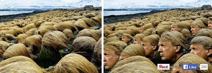Donald Trump Frisur Photoshop