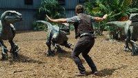 Jurassic World 2: Neuer Dino-Bändiger endlich gefunden