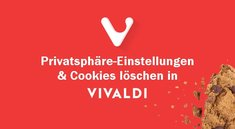 Vivaldi: Cookies löschen & Privatsphäre-Einstellungen anpassen - So geht's