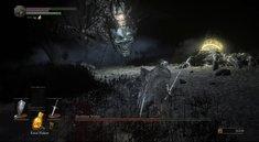 Dark Souls 3: Hochfürst Wolnir im Boss-Guide mit Video
