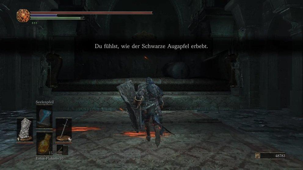 dark-souls-3-schwarzer-augapfel-erbebt