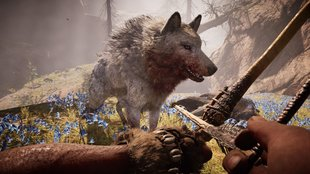 Far Cry Primal - Survival-Modus: Tipps für den Survivor-Mode
