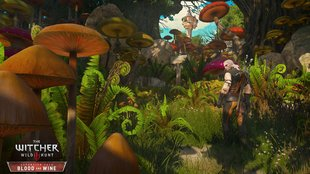 The Witcher 3 - Blood & Wine: Neue Screenshots zeigen den knallbunten DLC