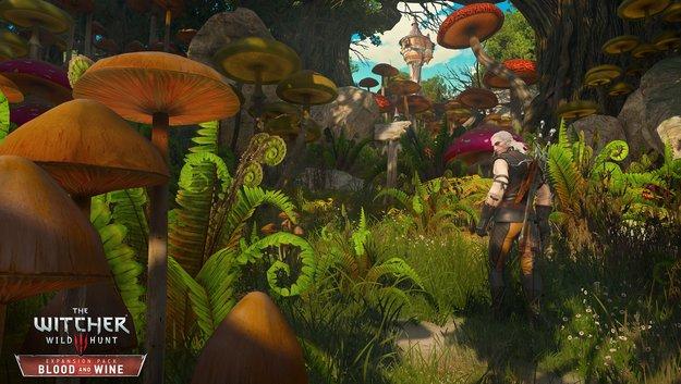 The Witcher 3 - Blood & Wine: Neue Screenshots zeigen den knallbunten DLC