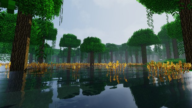 Life in the Woods - Renaissance installieren: So geht's