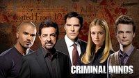 Criminal Minds: Wann kommt die finale Staffel 15 nach Deutschland?