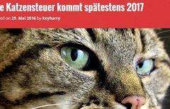 Einführung der Katzensteuer...