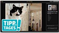Tipp: Jede Bildbearbeitungssoftware an Fotos von OS X anbinden, so gehts
