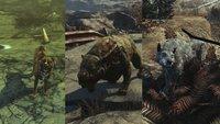 Fallout 4 - Far Harbor: Wachhunde Mishka, Gracie und Duke finden und freischalten