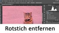 Rotstich entfernen aus Fotos (Photoshop & Gimp) – So geht's