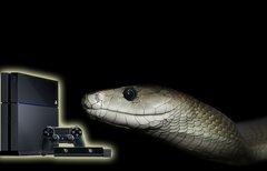 Solid Snake wörtlich genommen...