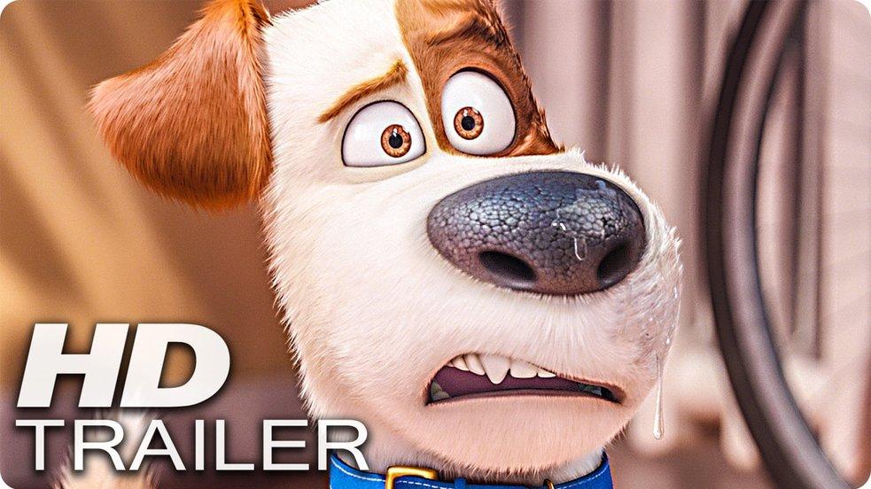 Pets - Trailer-Check