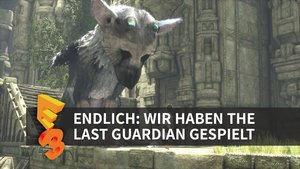 The Last Guardian in der Vorschau (E3 2016)