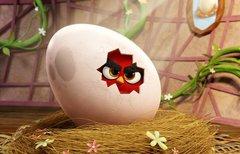 Angry Birds - Der Film im...