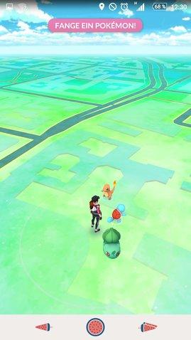 fange ein pokemon
